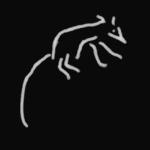 L'avatar di Opossum'