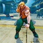 Street Fighter V skin 27