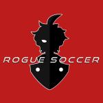 Rgue Soccer