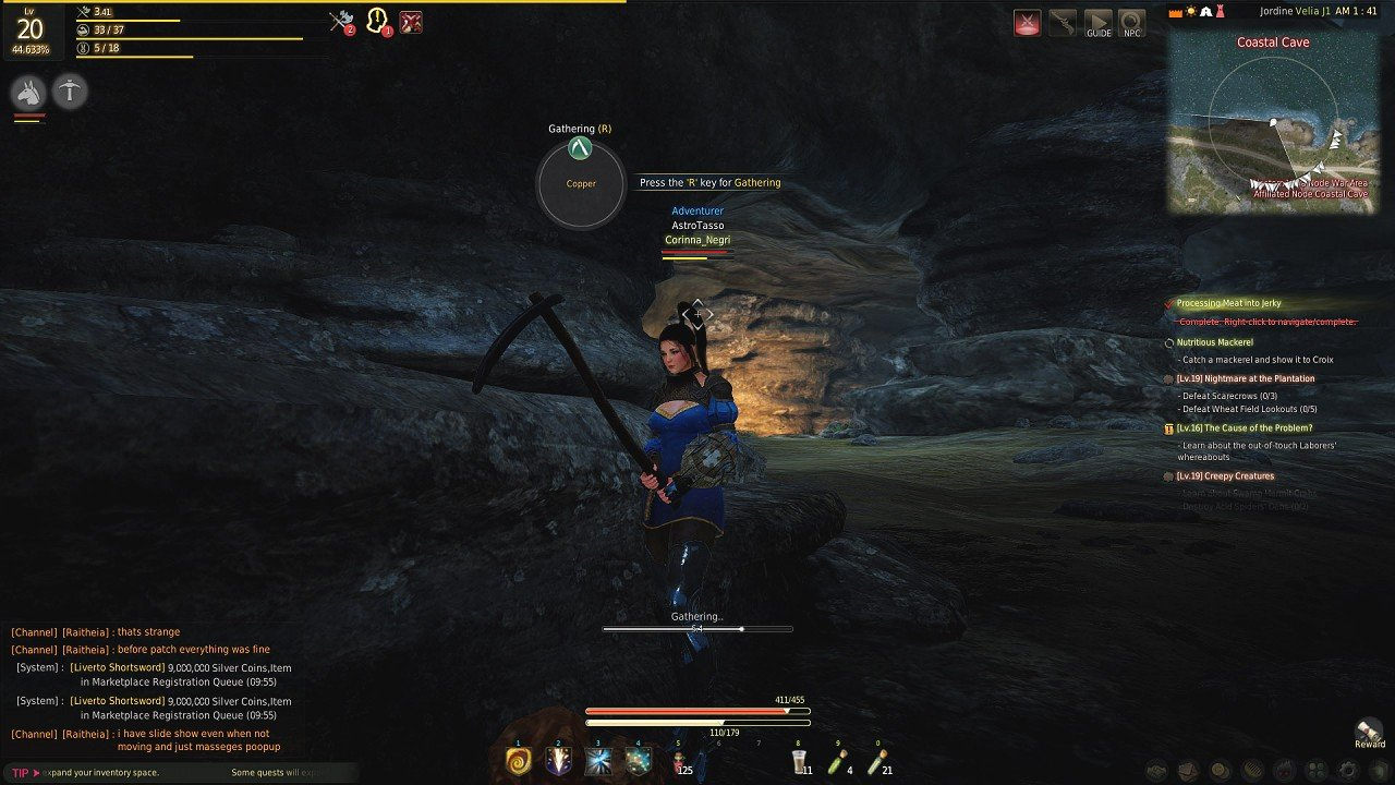 Black Desert Online immagine PC 03_2