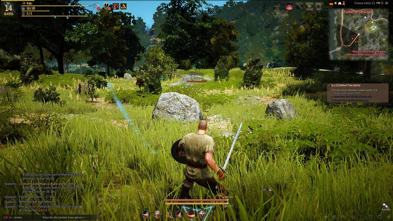 Black Desert Online immagine PC 04