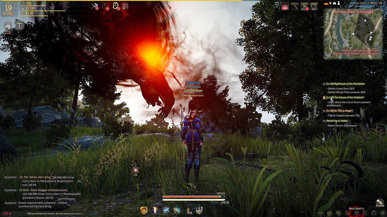 Black Desert Online immagine PC 06_3