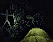 Blair Witch immagine Cinema 02