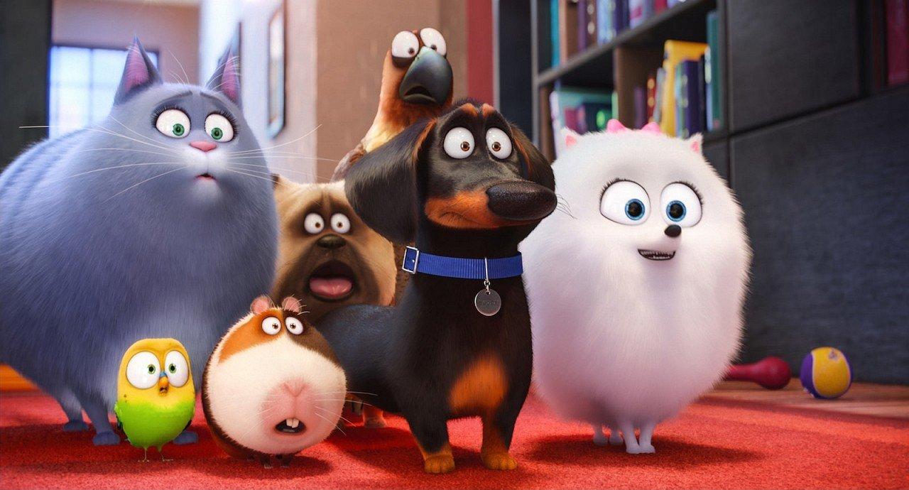 Pets – Vita da animali immagine Cinema 01