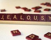 la gelosia delle cose editoriale