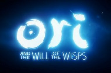 Ori and the Will of the Wisps Hub piccola