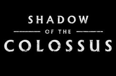 Shadow of the Colossus Hub piccola