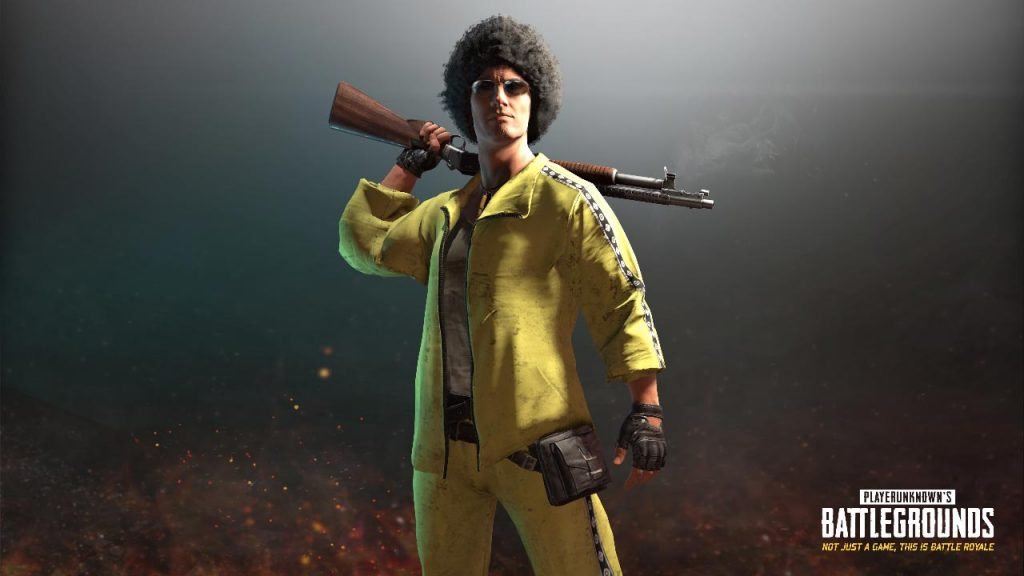 Playerunknown's Battlegrounds skin