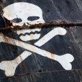 pirati ingrati
