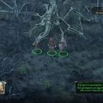Pillars of Eternity Complete Edition immagine PC PS4 Xbox One 10