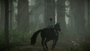 Shadow of the Colossus immagine PS4 10