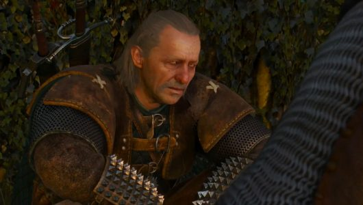 The Witcher mark hamill Vesemir