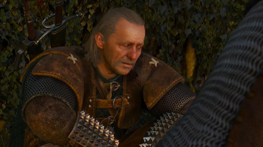 The Witcher mark hamill Vesemir
