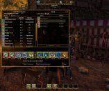 Shroud of the Avatar Forsaken Virtues PC Hub piccola