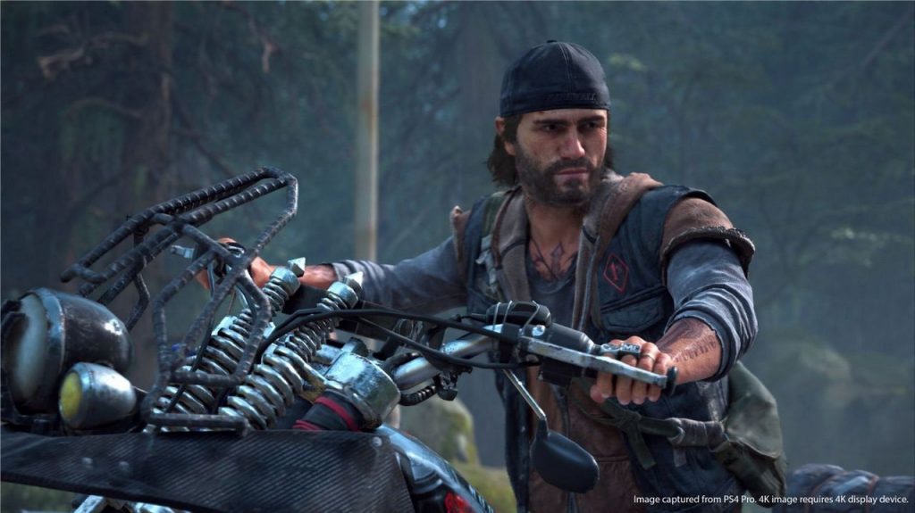 Days Gone Provato