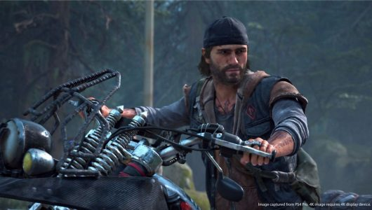 days gone multiplayer