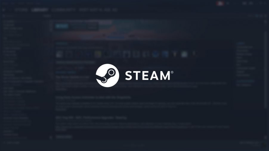 steam filtro adulti