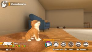 little friends dogs cats recensione