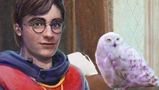 harry potter community day