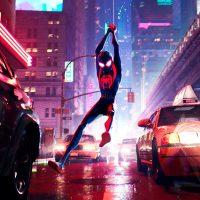 spider-man nuovo universo sequel