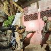 Six Days in Fallujah santa monica
